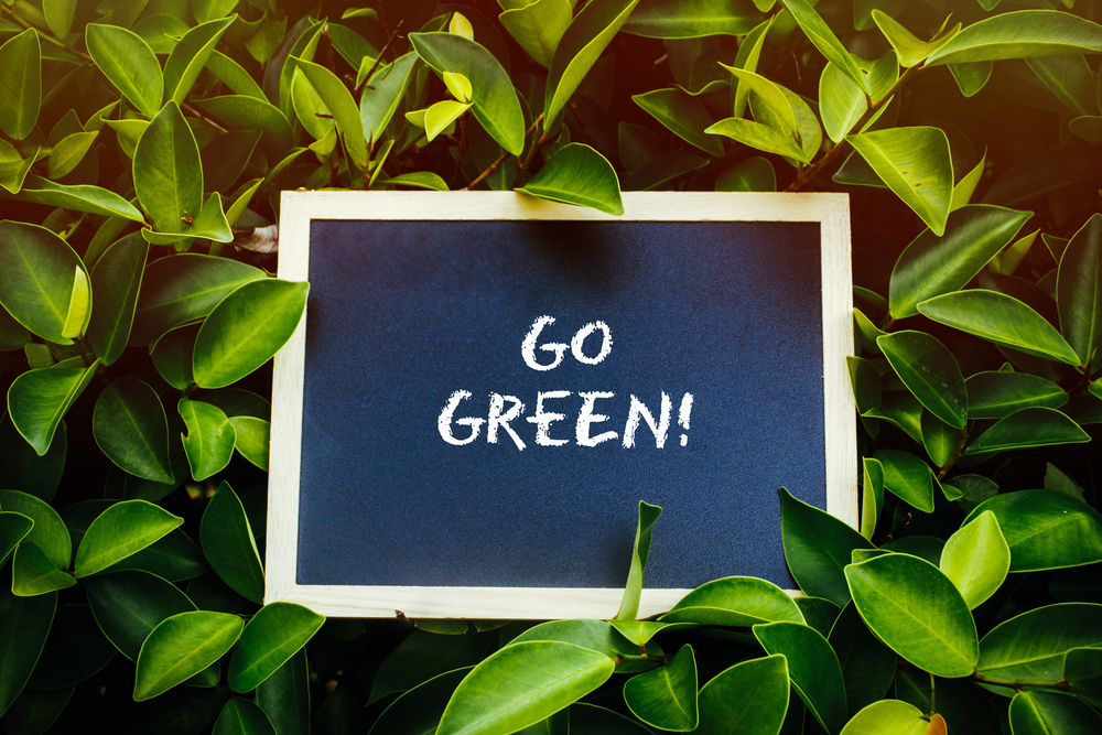 3 Great Ways To Make Your Business Greener